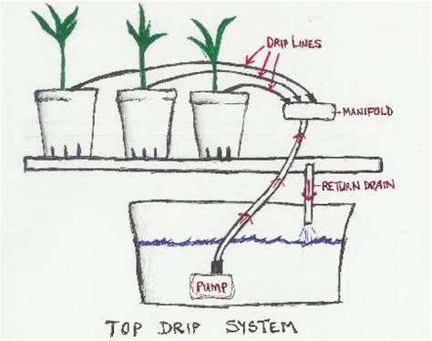 drip irrigation diagram hydroponic drip system free plans