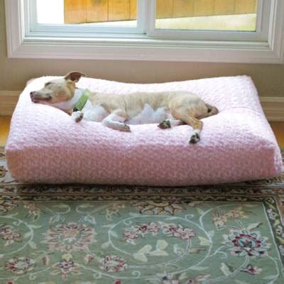 frontgate dog beds animals matter 174 chenille katie pet bed and blanket