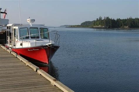 yacht boat rides near me sunset picture of downeast charter boat tours lubec