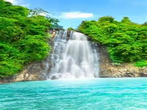 beautiful waterfalls with flowers back yard interior design house design and decorating ideas