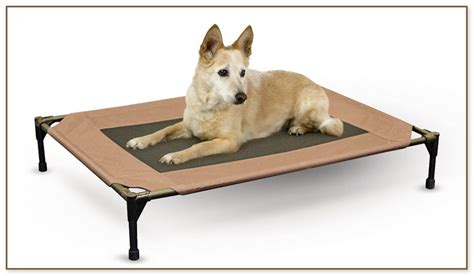 martha stewart dog beds martha stewart dog beds martha stewart double bolster