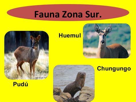 fauna de la zona sur chile en imagenes ppt flora fauna y paisajes por zonas