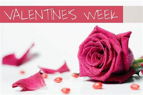 valentines days week tips to make s week more special for your loved