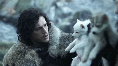 libro steel and snow where was jon snow s dire wolf during the battle of the bastards