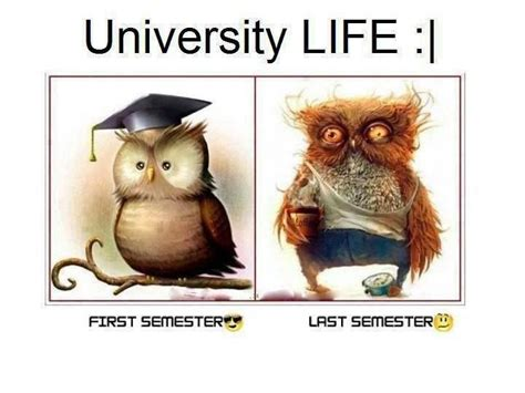 Uni Memes - university life college life and life on pinterest