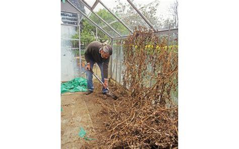 Tomaten Im Gewächshaus Pflanzen 4715 by Gew 228 Chshaus Reinigen Mein Sch 246 Ner Garten