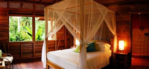 tree house bedroom 28 treehouse bed designs bedroom designs design