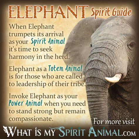 symbolizes meaning elephant symbolism meaning spirit totem power animal