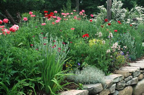perennial borders letters from stonewell