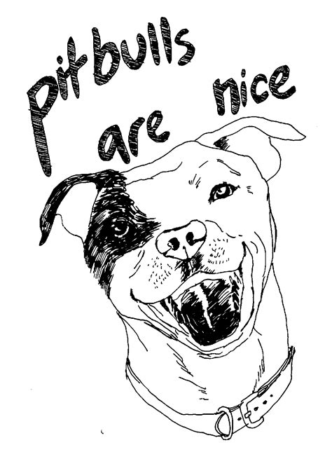 coloring pages of pitbull dogs pitbull puppy coloring pitbull puppy coloring