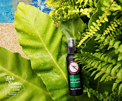 natural mosquito repellents incognito mosquito repellent the best natural insect