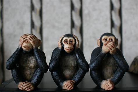 three wise monkeys see no evil hear no evil speak no e