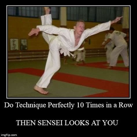 Martial Arts Memes - best 25 martial arts funny ideas on pinterest martial