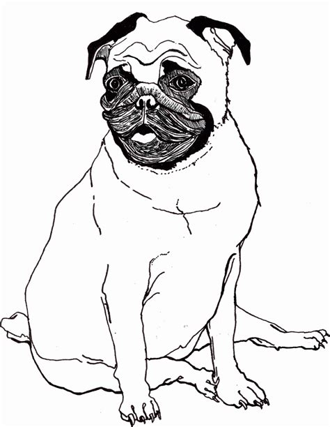 pug pictures to print 33 pug coloring pages free coloring pages of and pug pug to print out 1000