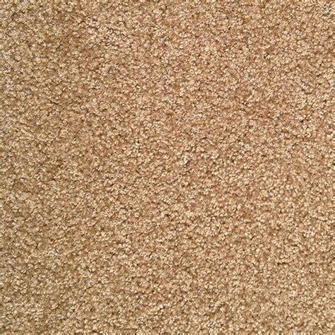 cut pile rugs shaw mojo ii 13 7 quot cut pile carpet brownwood surplus warehouse
