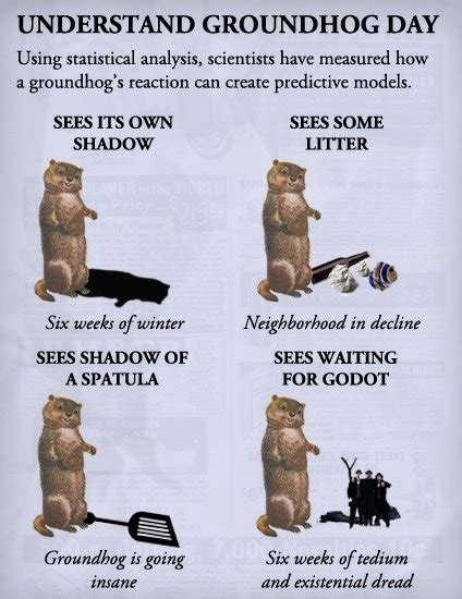 groundhog day analysis 93 best groundhog photos images on
