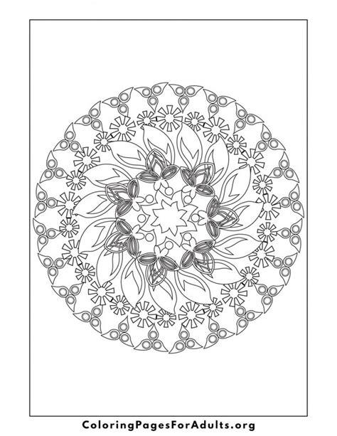disegni di cornici da stare album da colorare per adulti il nuovo modo di rilassarsi