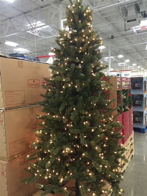 sams club christmas trees sam s club pre black friday event going on now