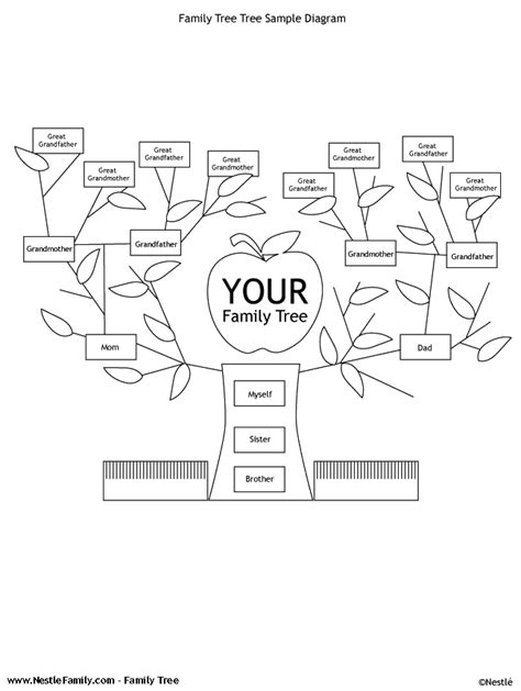 tree diagram coloring page free printable tree template coloring home