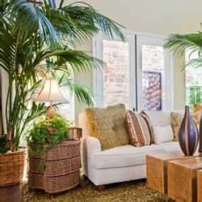best living room plants how to paint your house naturally follow green living
