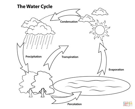 simple water cycle coloring page free printable coloring