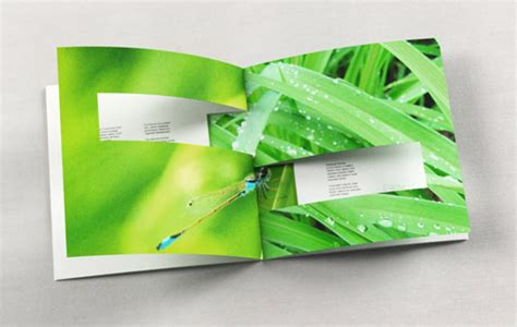 booklet design showcase of 70 creative booklet and catalog designs for