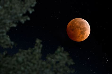 The Moon Looked what a lunar eclipse looks like from the moon business insider