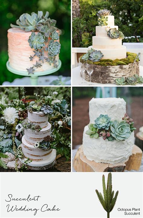Wedding Cake With Succulents by 9 Ways To Decorate With Succulents For Weddings Events