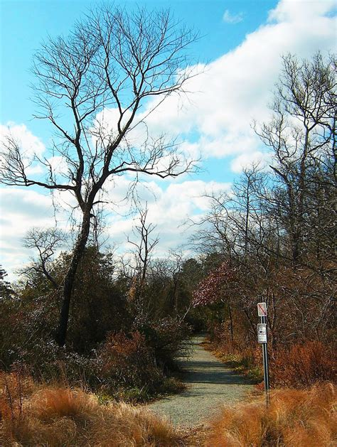 bird sanctuary trail in south jersey love s photo album
