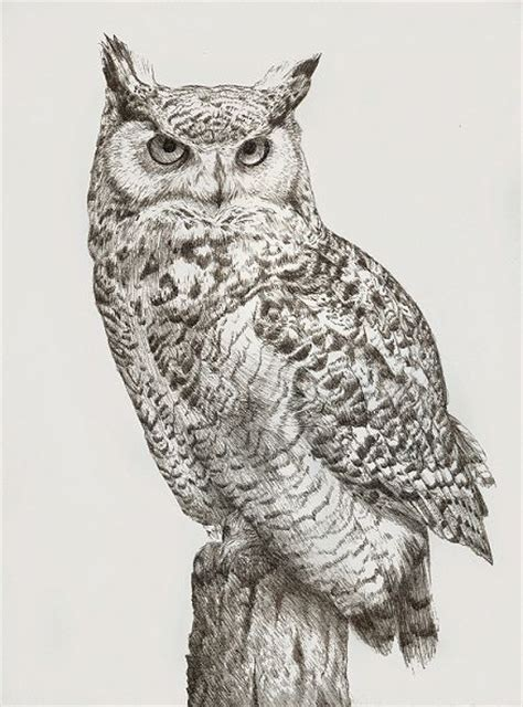 great horned owl tattoo ink drawing of a great horned owl artist