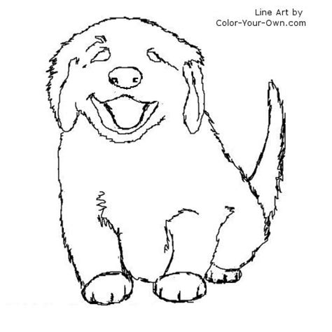 coloring pages of golden retriever puppies drawn golden retriever husky pencil and in color drawn