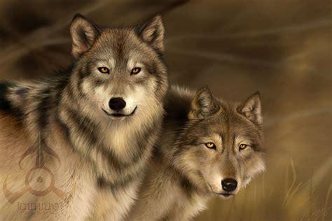 imagenes terrorificas de lobos imagenes de lobos taringa