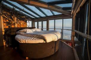 treehouse bedroom home design ideas pictures remodel and decor