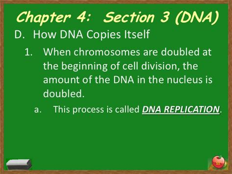 chapter 11 section 4 chapter 4 section 3 dna