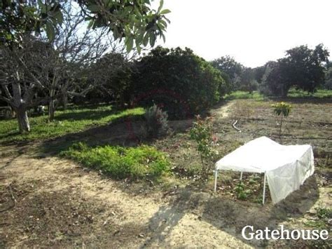 cheap cottage for sale cheap cottages for sale gatehouse international portugal