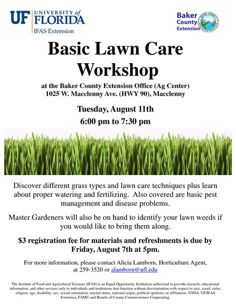 lawn care flyer template free best template examples