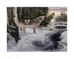 wolf themed bedroom 1000 images about home z s room on pinterest wolves