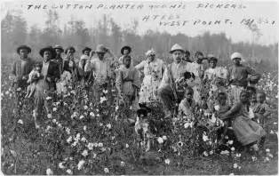 file cotton planter and pickers1908 jpg
