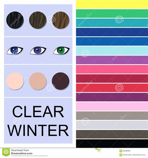 clear winter color palette stock seasonal color analysis palette for clear winter