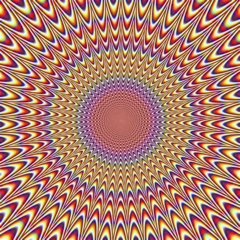 Designer Living Coupon by 1000 Images About Illusions On Pinterest