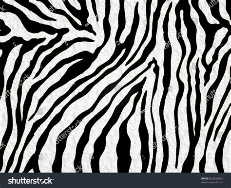 skin pattern of zebra zebra skin pattern