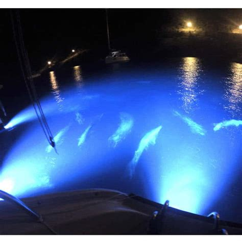 led boat lights review hurley marine rgb led sea vue trim tab boat lights