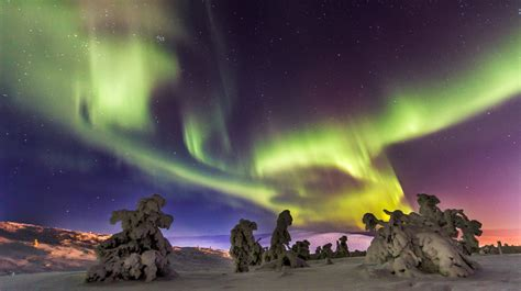 Northern Lights Borealis In Lapland Finland