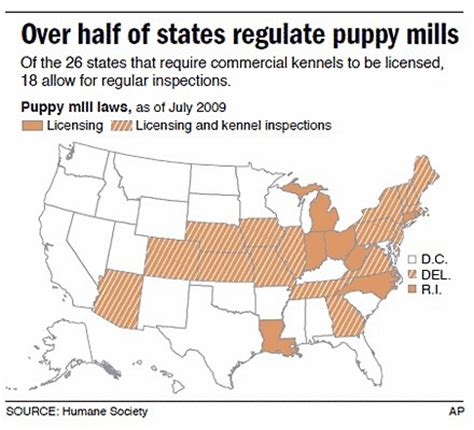 is puppy spot a puppy mill tell governor cuomo to regulate puppy mills