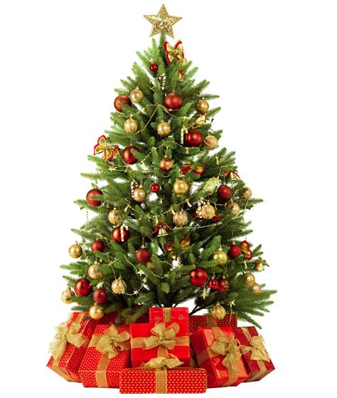 significance of christmas tree and ornaments custom tree ornaments family trees