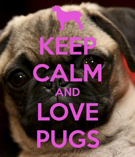 keep calm and pugs keep calm and pugs poster aimww keep calm o matic