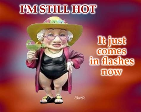 hot flashes funny quotes 60 best ideas about hot flashes on pinterest night