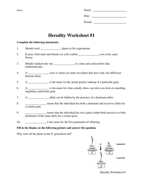 Heredity Worksheet by Worksheets Heredity Worksheets Opossumsoft Worksheets