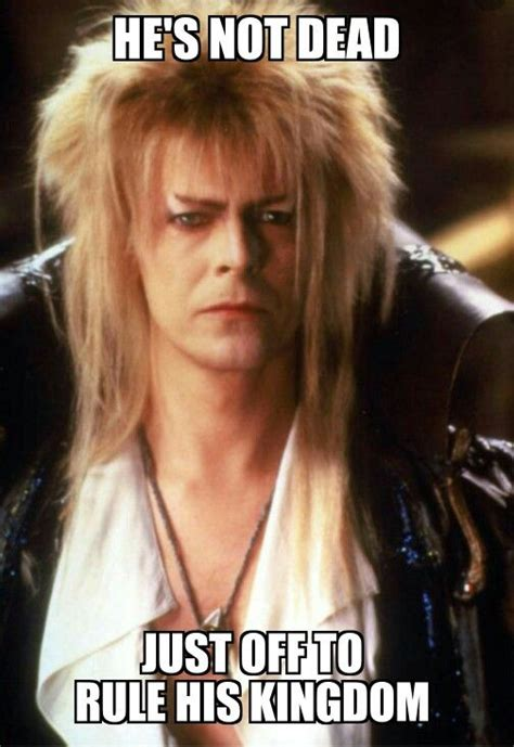 David Bowie Labyrinth Meme - 654 best labyrinth images on pinterest labyrinth movie