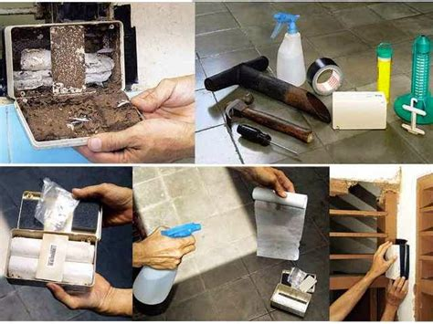 Obeng Bolak Balik 3 In 1 Tarik Kode Fd10817 1 cara membasmi rayap dengan tisu